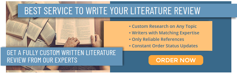 Write my literature review service