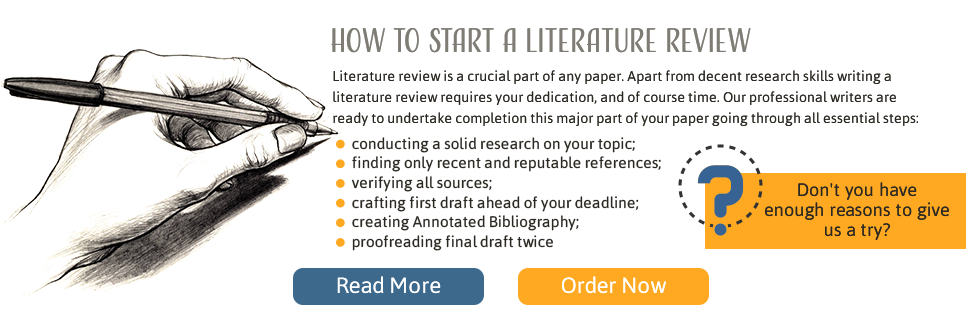 how literature review